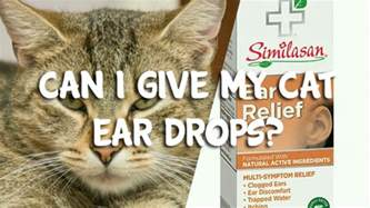 what can i give my cat for and swelling can i give my cat ear drops pet consider