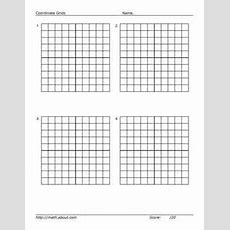 Practice Your Graphing With This Printable 20 X 20 Grid  Search And Paper