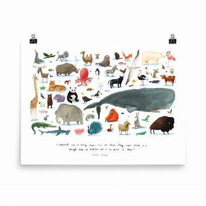 Poster Animals Animal Posters Oliver Jeffers Prints
