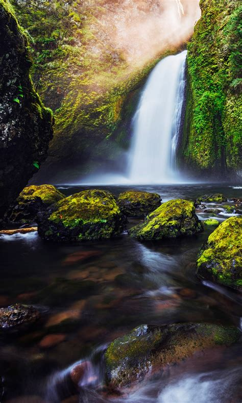 green moss waterfall  wallpapers hd wallpapers id