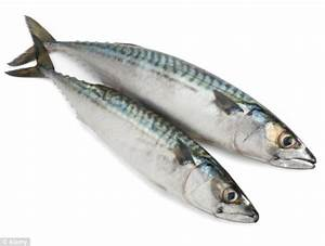 Mums-to-be told it is safe to eat more oily fish after ...