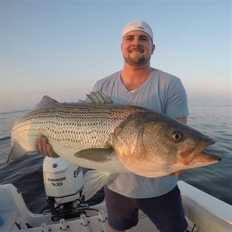 Late Summer Stripers To 35 Pounds  My Fishing Cape Cod