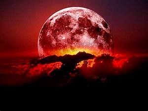 Blood Moons (What Does The Bible Say About Blood Moons ...