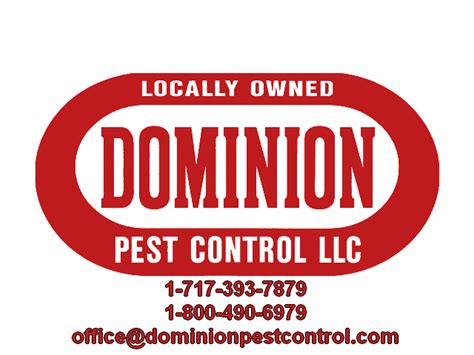 Local Pest Control Lancaster Pa  Mom Bloggers Club. How Does Chevy Volt Work Ualbany Study Abroad. Carpet Cleaning Baulkham Hills. One Direction Math Song Lyrics. Xfinity Home Security Cameras. Mass General Nursing Program. Cell Phone Brain Damage Pre School In Spanish. Waterproof Non Slip Tape Brake Masters Tucson. Small Business Equipment Financing