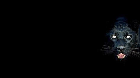 Black Animal Wallpaper - black panther backgrounds wallpaper cave