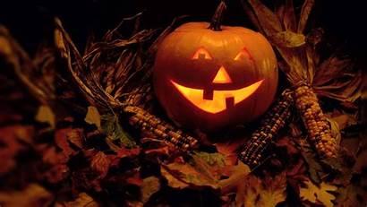 Halloween Wallpapers Pumpkin Laughing Pixelstalk Moon