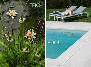 Schwimmteich Oder Pool : naturnah baden naturpool bio pool oder schwimmteich ~ Whattoseeinmadrid.com Haus und Dekorationen