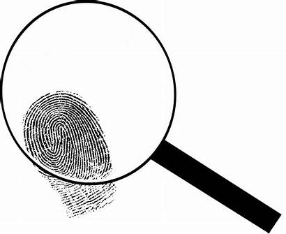 Magnifying Glass Detective Clipart Clip Transparent Lupa