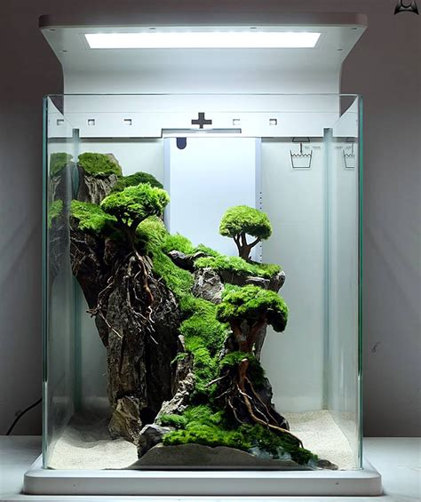 Aquascape Nano by 9 Aquascape Nano Tank Ideas Aquascape Paludarium