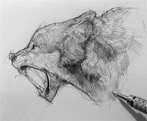 He also provides the diameter of each drawing to help anyone else who would love to learn his craft. Pencil Sketch artist Efraín Malo   Drawing   ARTWOONZ