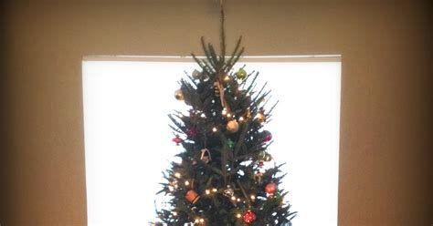 my life by design oh christmas tree and other stuff