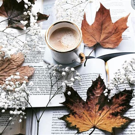 instagram autumn photography autumn aesthetic autumn