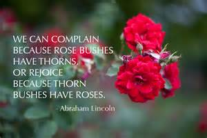 Quotes About Roses