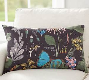 daisy botanical print lumbar pillow cover pottery barn With botanical print pillows