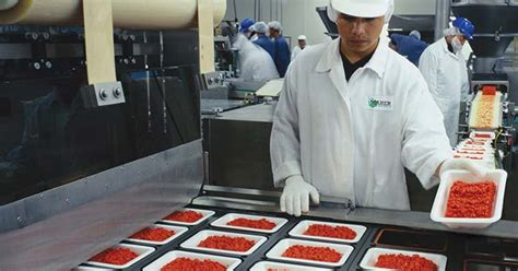 haccpgfsi food industry clothing uniforms services