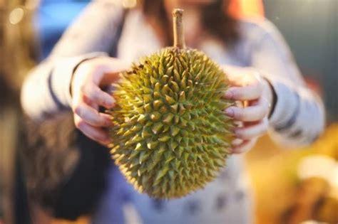 Wanita Hamil Makan Durian Bahaya Makan Buah Durian Bagi Ibu Hamil Aku Buah Sehat