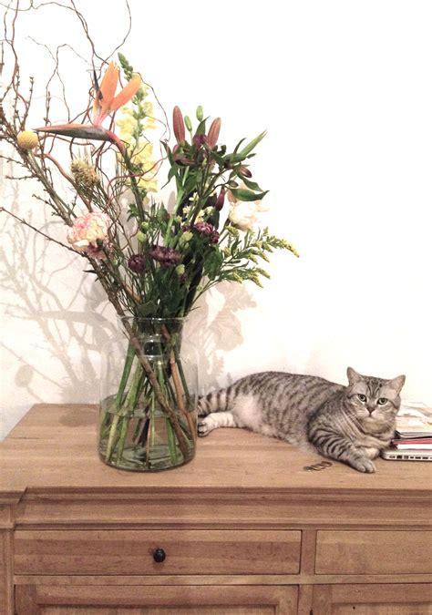 bloomon bloemen schoonmaken review bloemen bestellen via bloomon be m 233 t kortingscode