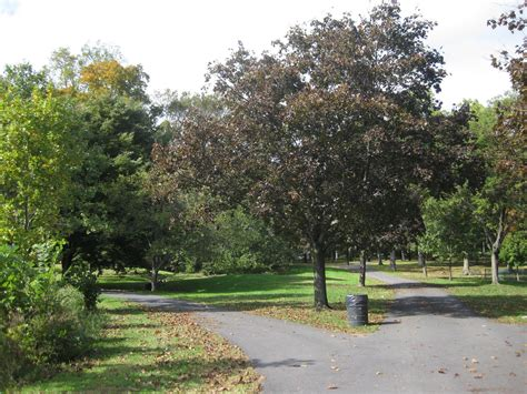 Stranger Tries To Lure Boy With Candy At Brookdale Park