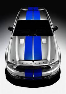 Ford Mustang Shelby Cobra Gt500kr   2008