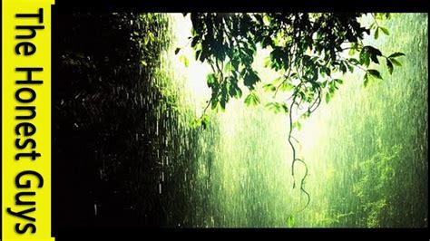 relaxation   hour gentle rain meditation youtube