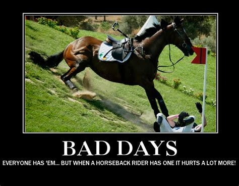 Horse Memes - horse show funny quotes quotesgram