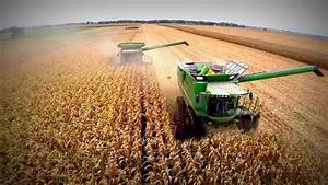 Central IL Corn Harvest 2013, presented by Cross Implement ...