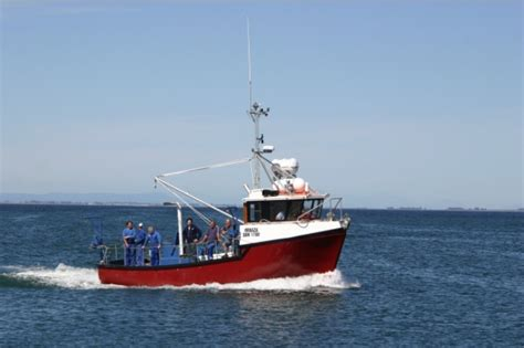 Commercial Fishing Boat Auction by T33 For Sale South Africa Boats For Sale Used Boat Sales