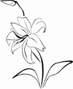 Easter Lily Clipart - ClipArt Best