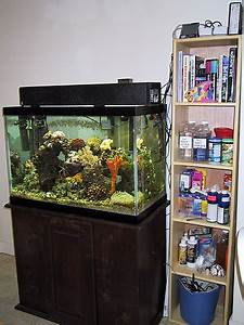Coral Reef Setup