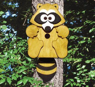Free Images Raccoons Paint Wood Birdhouse