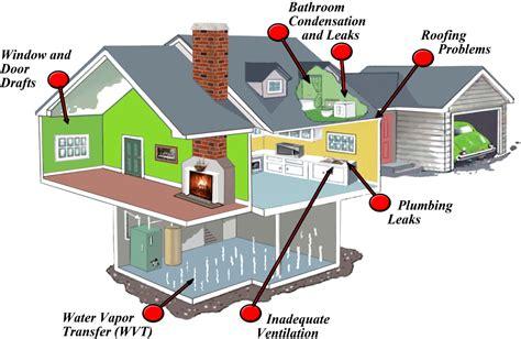 mold  basements attics    toxic mold