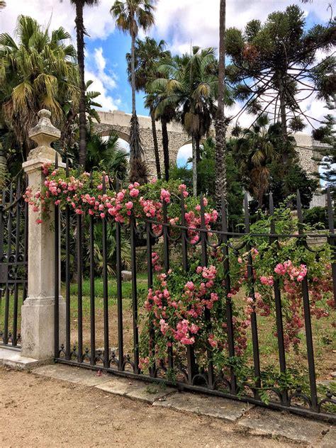 Botanischer Garten Coimbra by Roadtrip Portugal Teil 3 Der Norden Portugal