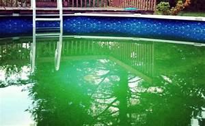 Nettoyer Piscine Verte : l 39 eau de votre piscine est verte voil comment agir ~ Zukunftsfamilie.com Idées de Décoration