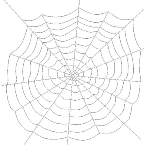 spider web clipart transparent spiders web transparent background free png images