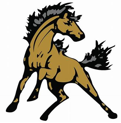 Mustang Mascot Clipart Horse Effingham South Freeuse