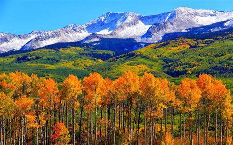 Colorado Hd Picture by Autumn Colorado Fall Snowy Mountains Nature Landscape Hd