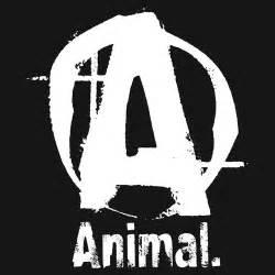 Universal Nutrition – Animal Serisi | SPORSONIK