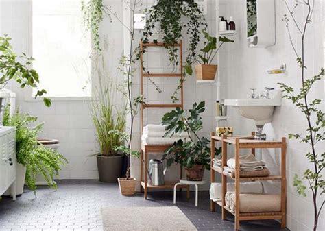 plante verte pour chambre des plantes vertes pour une salle de bains tendance