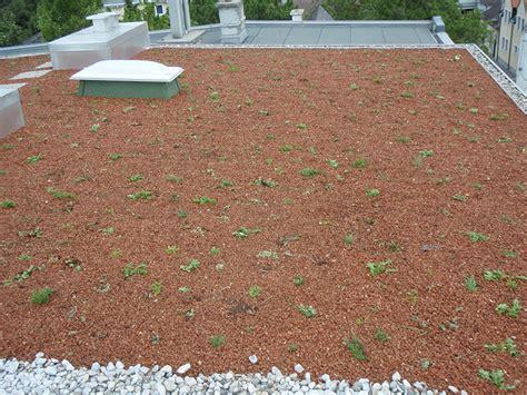 Dachbegruenung Natuerliche Klimaanlage by Neuherstellung Dachbegr 252 Nung Walter Kr 252 Ckl Gmbh