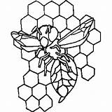Hive Bee Coloring Sheet Freecoloringsheets Insects sketch template