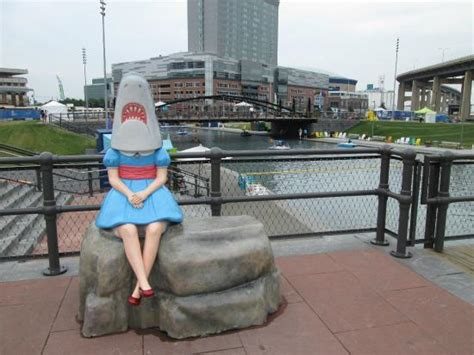 Paddle Boats Buffalo New York by Beautiful Sailboats Are Everywhere Picture Of Canalside