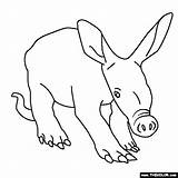 Aardvark Coloring Animals Pages Colouring Thecolor Animal Sheet Board Books Designlooter Knitting Anteater sketch template