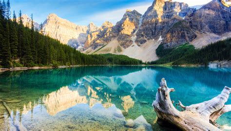 Nature Hd by Nature Hd Wallpaper For Mobile 57 Wallpaper