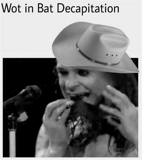 Wot In Tarnation Memes - wot in tarnation with a bat decapitation memes dopl3r com