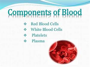 Functions of red blood cells white blood cells plasma and ...