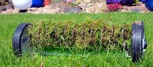 Rasen Vertikutieren Zeitpunkt : steingarten anlegen und gestalten ~ Orissabook.com Haus und Dekorationen