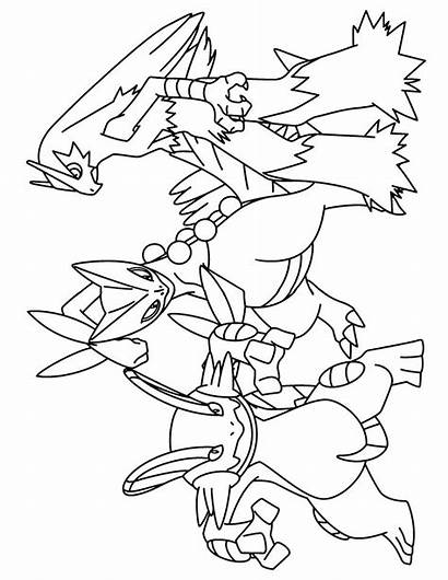 Pokemon Coloring Pages Advanced Swampert Mega Grovyle