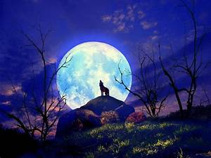 Full Wolf Moon In Cancer, January 12th: Awareness and ...