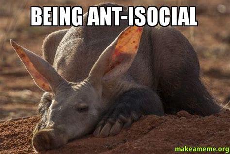 Ant Meme - being ant isocial make a meme