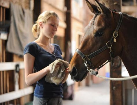 horse care robin know duncan basic acquainted ways better